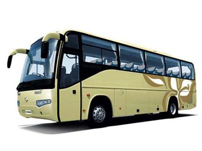 Mini Coach 2327